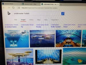 My computer was searching for underwater hotels without me...and listening to music.